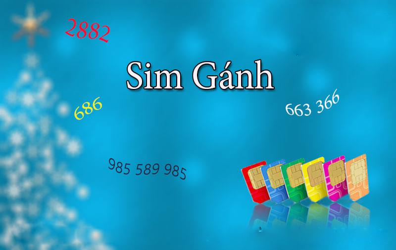 Sim Ganh Dao (1)